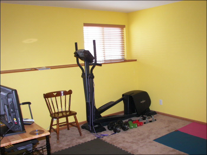 Port Washington basement exercise room